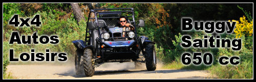 Buggy Saiting 650cc 4×4 Autos Loisirs