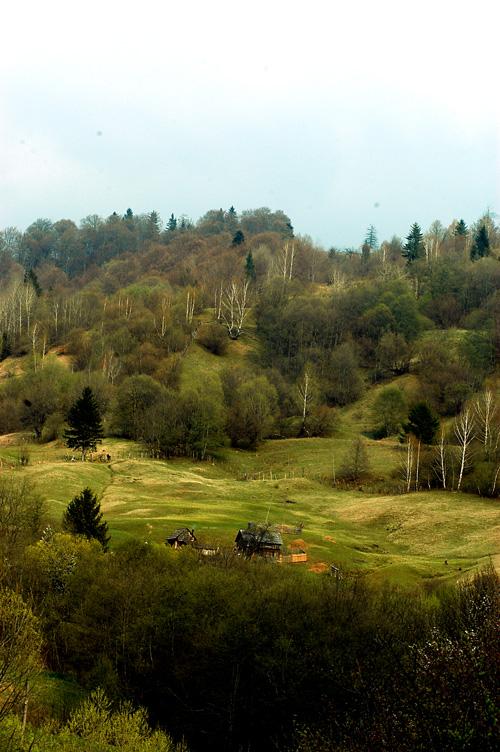 paysage-2.jpg