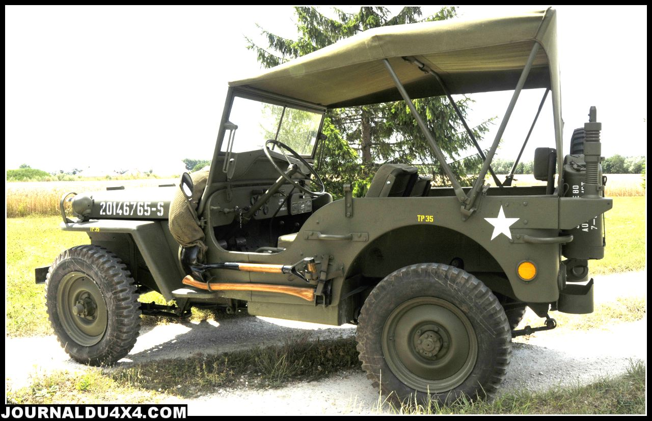 profil-jeep.jpg