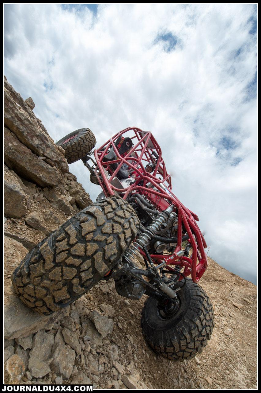 agrippa Rock bouncer