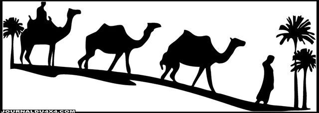 caravane-chameau.jpg