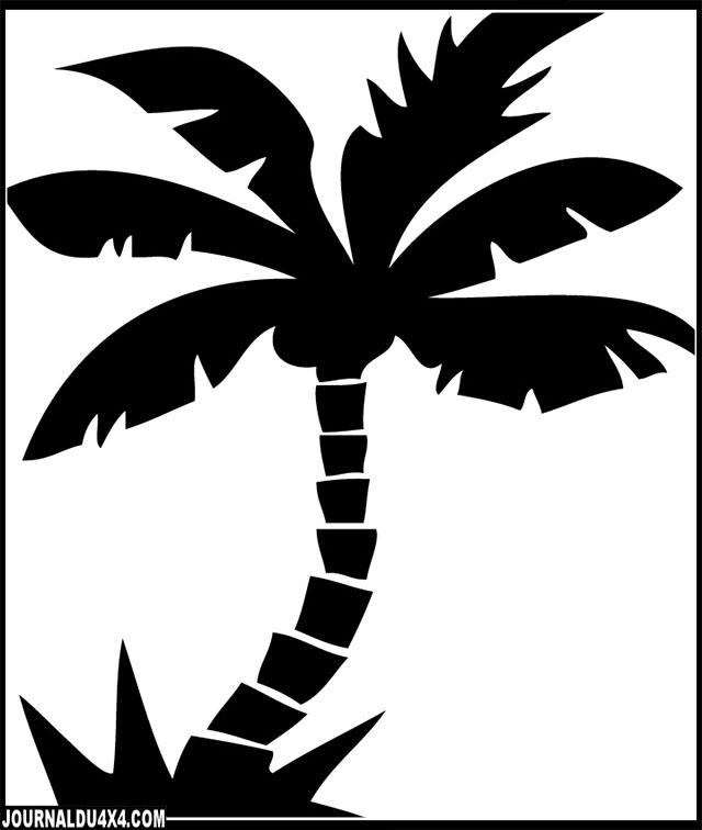 palmier-4x4.jpg