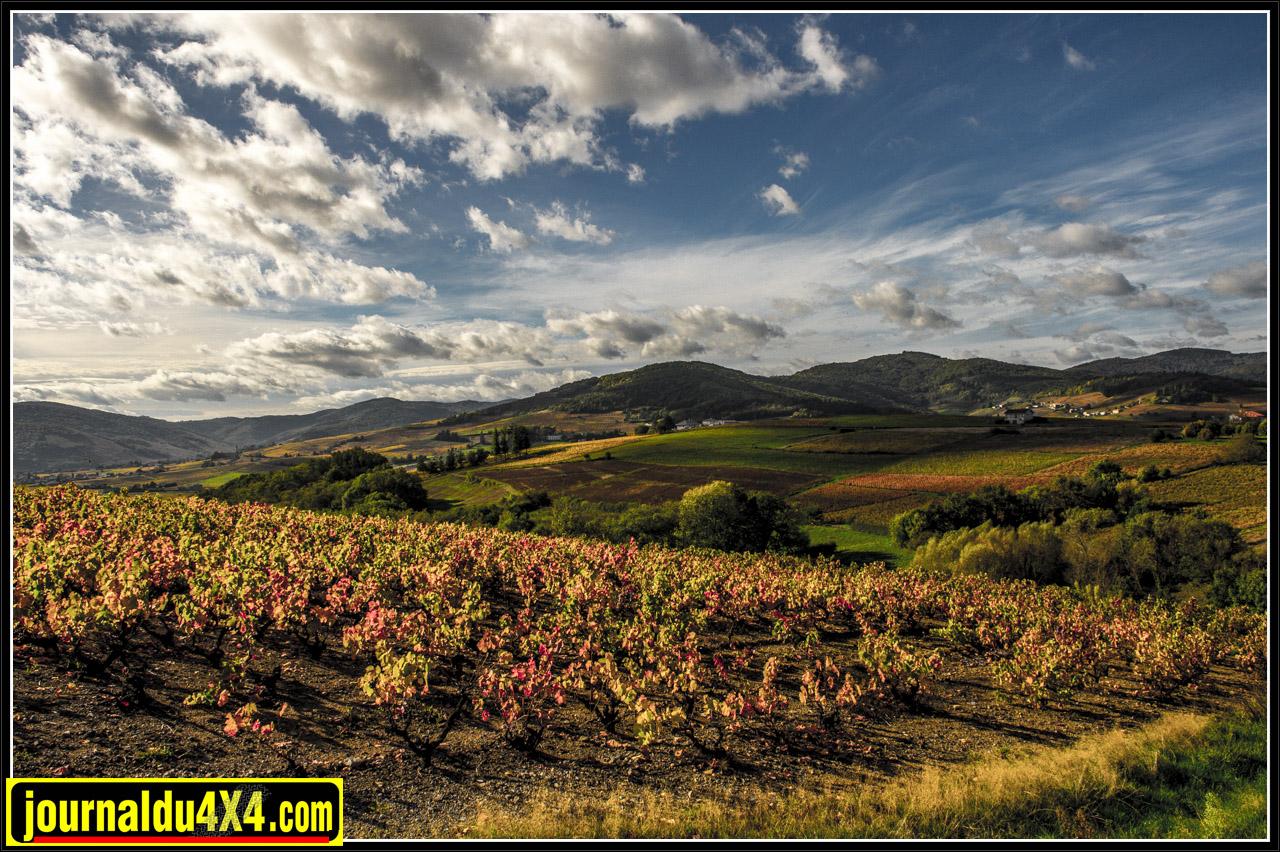 Le Beaujolais en automne est une magnifique région