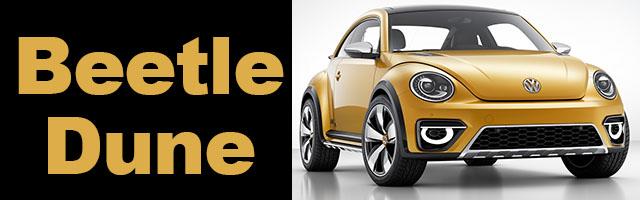 Beetle Dune : cross &  tout terrain ?