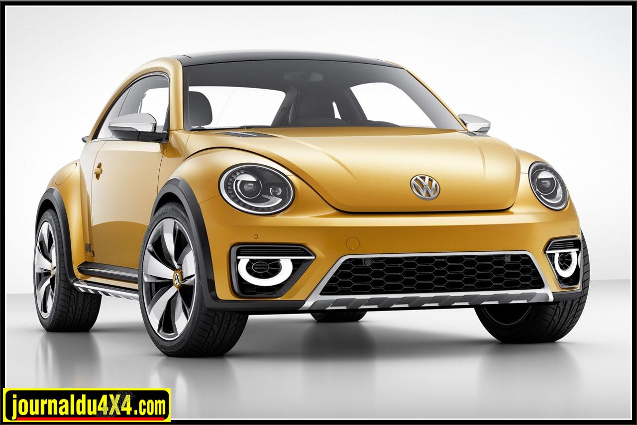 Beetle Dune Beetle Dune