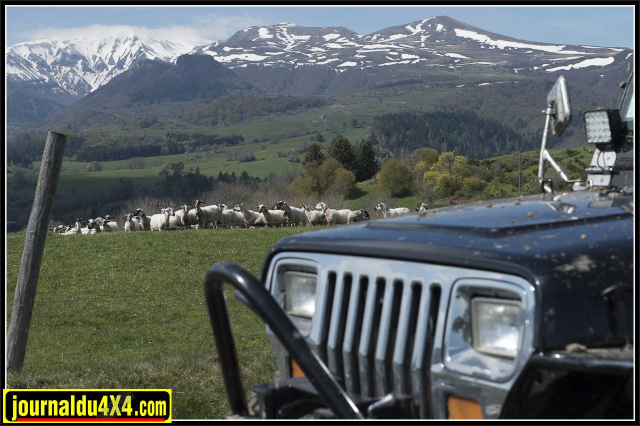 jeep-chambon-balade-2014-2014-163.jpg