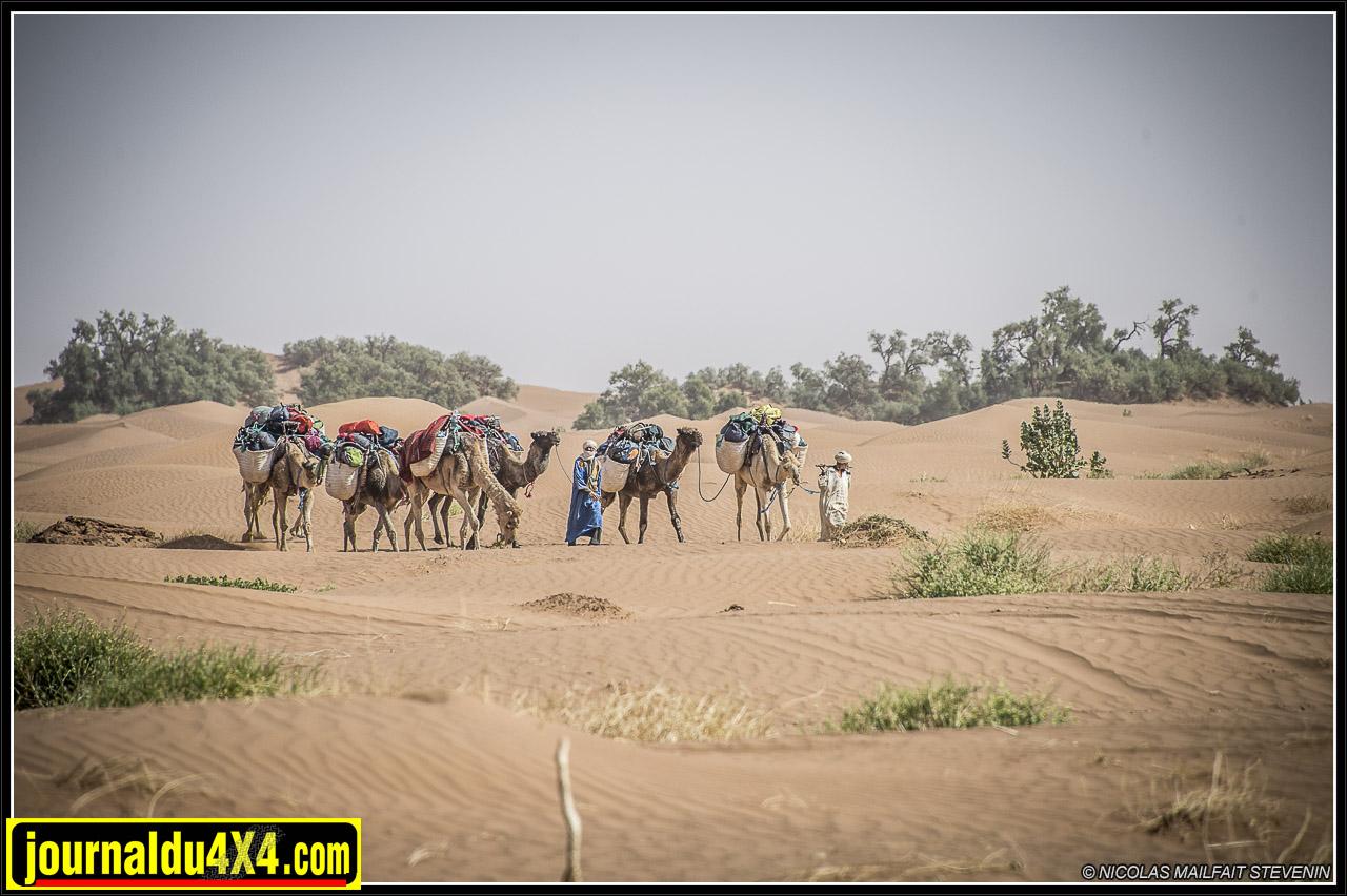 rallye-des-gazelles-2016-7967-2.jpg
