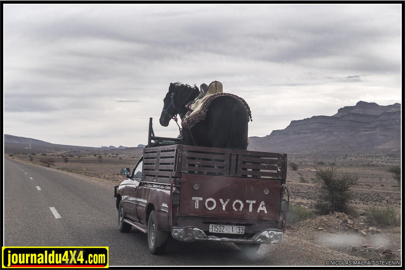 rallye-aicha-gazelles-maroc-2017-6719.jpg