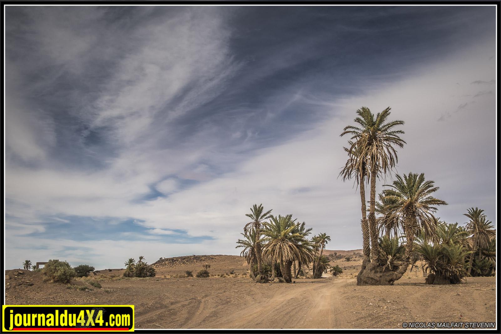 rallye-aicha-gazelles-maroc-2017-6813.jpg