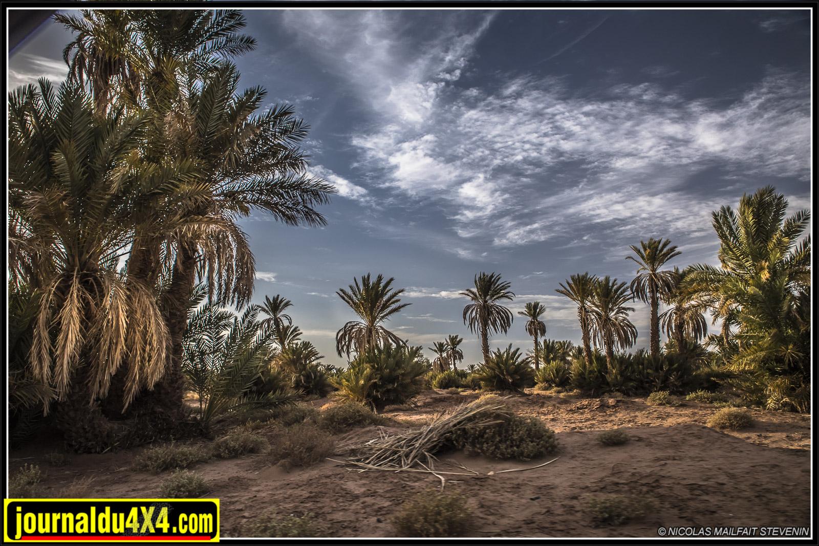 rallye-aicha-gazelles-maroc-2017-6941.jpg