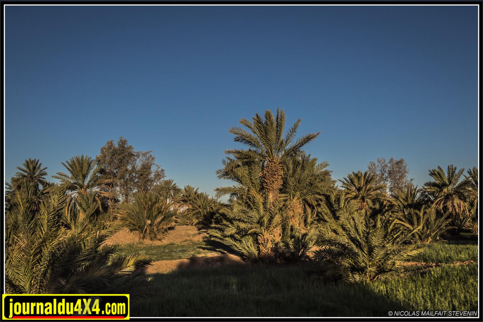 rallye-aicha-gazelles-maroc-2017-7008.jpg