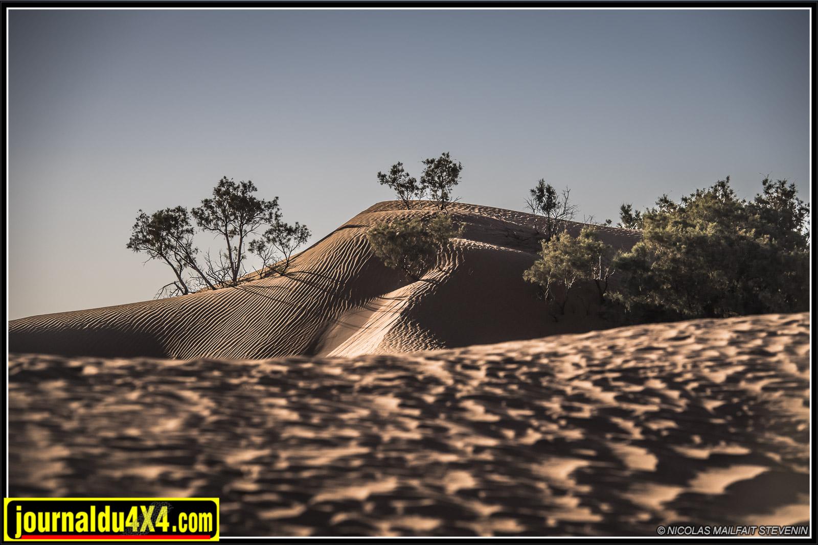 rallye-aicha-gazelles-maroc-2017-7017.jpg