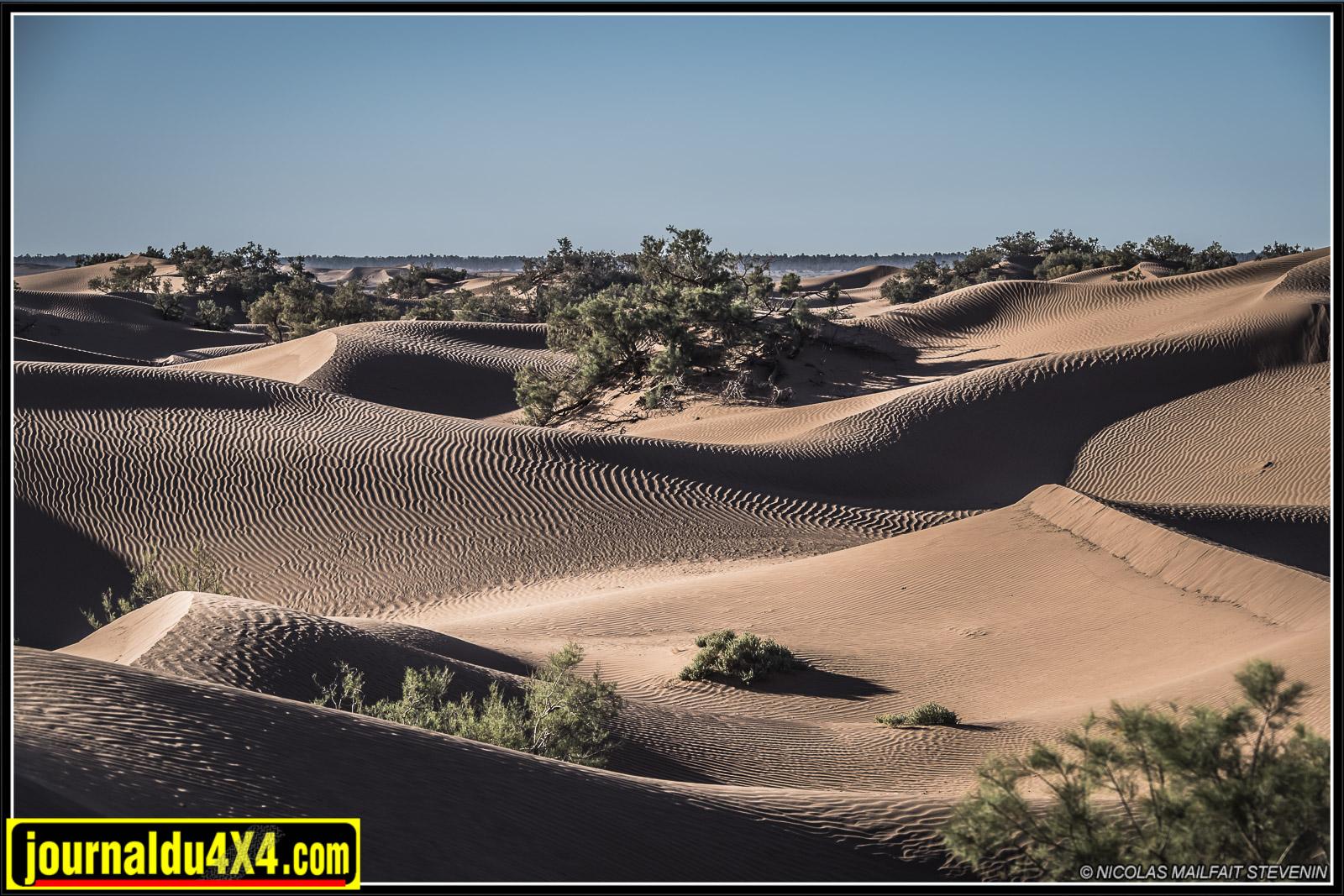rallye-aicha-gazelles-maroc-2017-7027.jpg