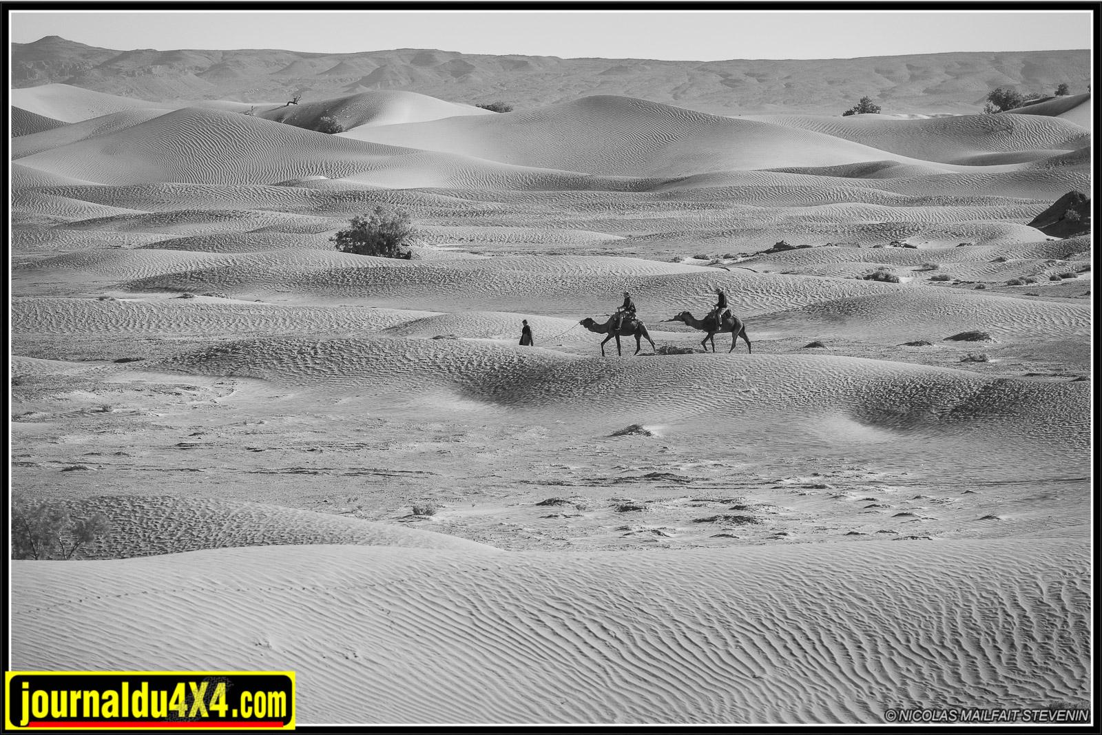 rallye-aicha-gazelles-maroc-2017-7051.jpg