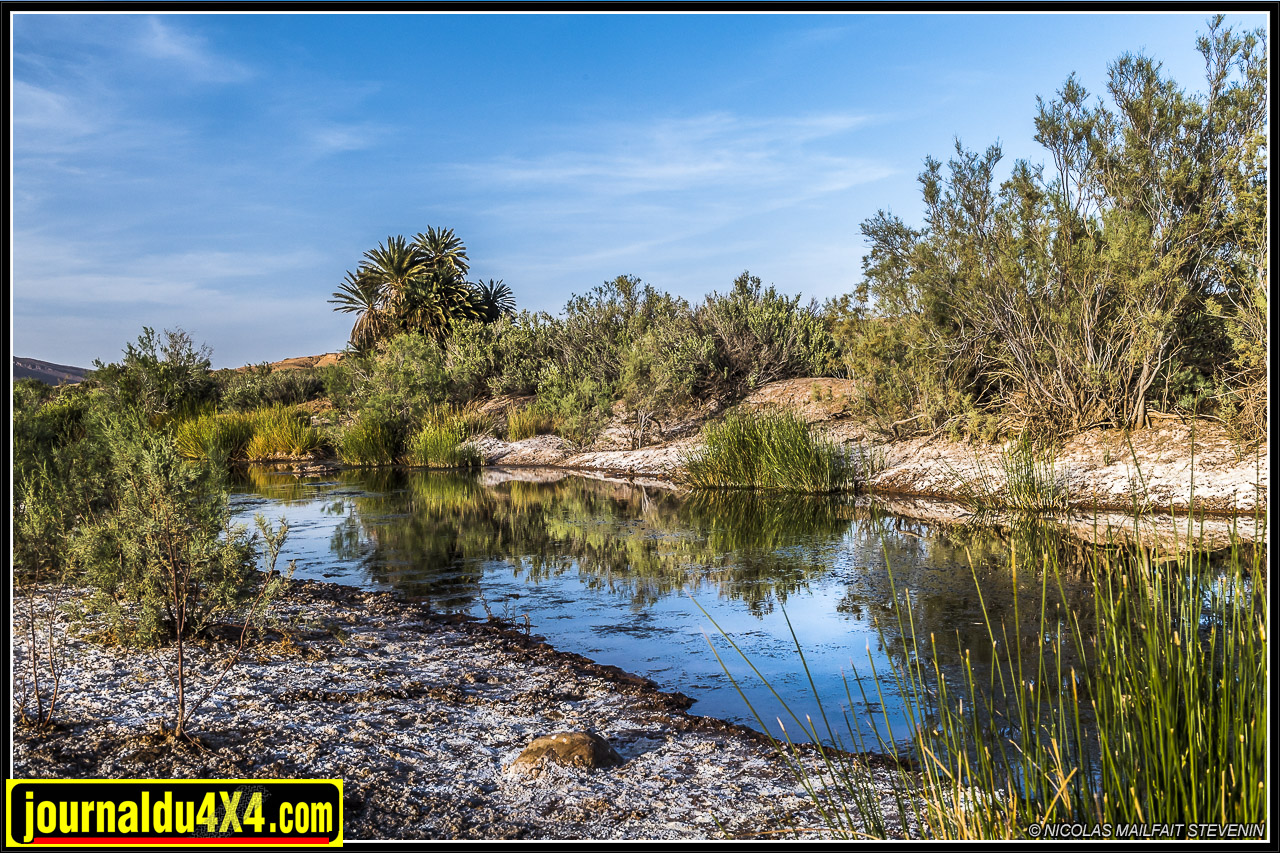 rallye-aicha-gazelles-maroc-2017-8774.jpg