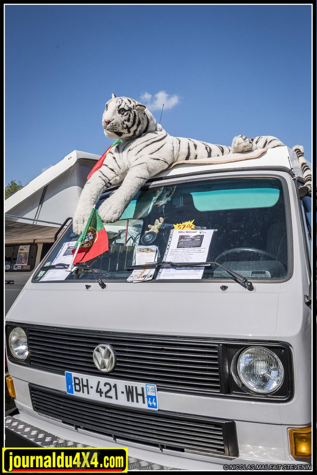 Un tigre se repose au soleil